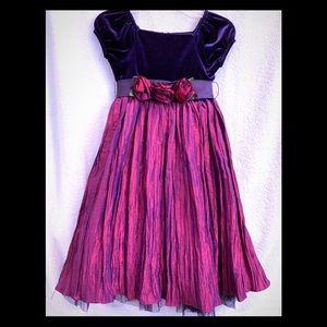 Sweet Heart Rose Velvet Taffeta Dress Girls 6